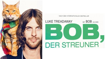 Home-Entertainment-Start von BOB, DER STREUNER